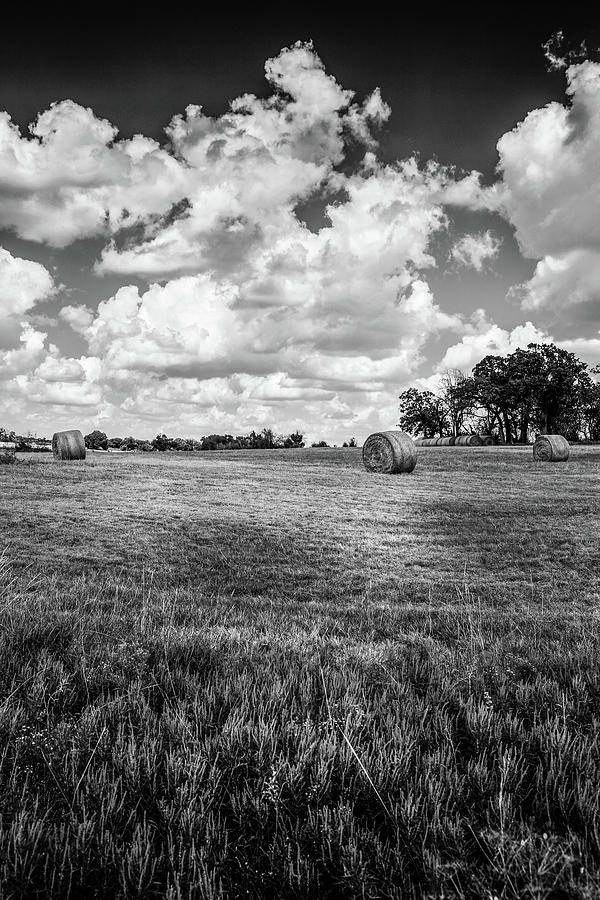 Round Bales In Texas 001 Photograph