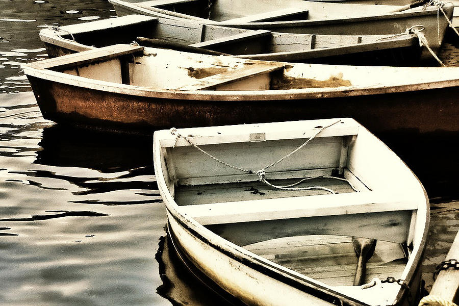 Rowboats Photograph - Rowboats In Maine by Tony Grider