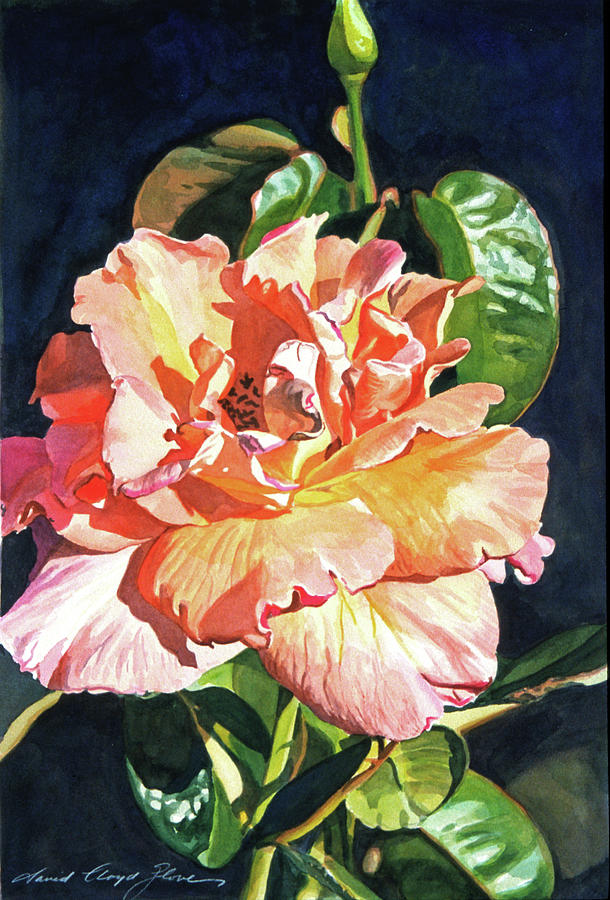 Roses Painting - Royal Rose by David Lloyd Glover