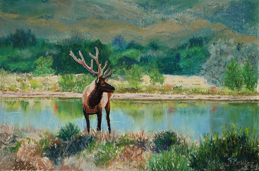 Elk Painting - Royal Velvet by Mary Benke