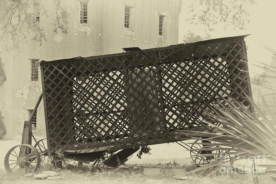 Rusted Horse Drawn Paddy Wagon Photograph