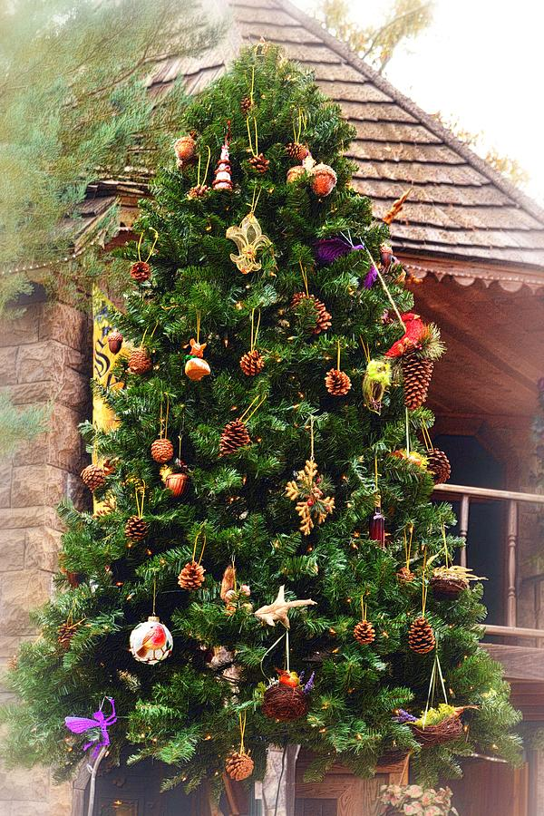Rustic Christmas Tree Photograph By Nadalyn Larsen