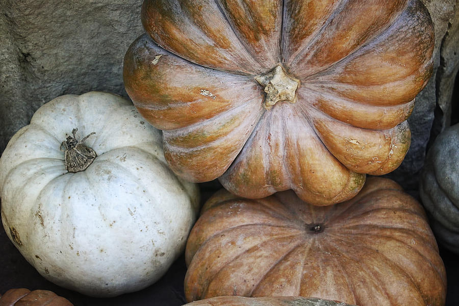 Autumn Photograph - Rustic Pumpkins by Joan Carroll