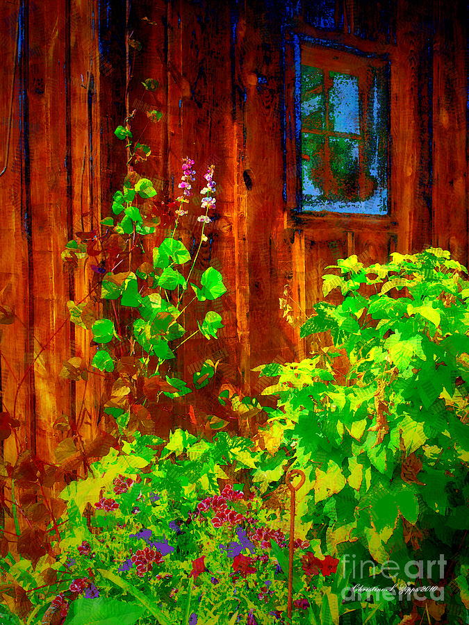 Nature Photograph - Rustic Summer Shed by Christine S Zipps