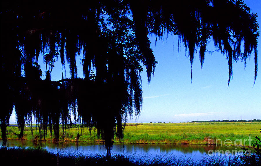 Louisiana Outback Photograph - Sabine National Wildlife Refuge by Thomas R Fletcher