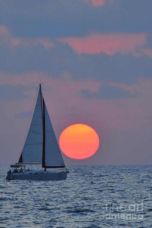Sail Boats Photograph - Sailboat At Sunset  by Shay Levy