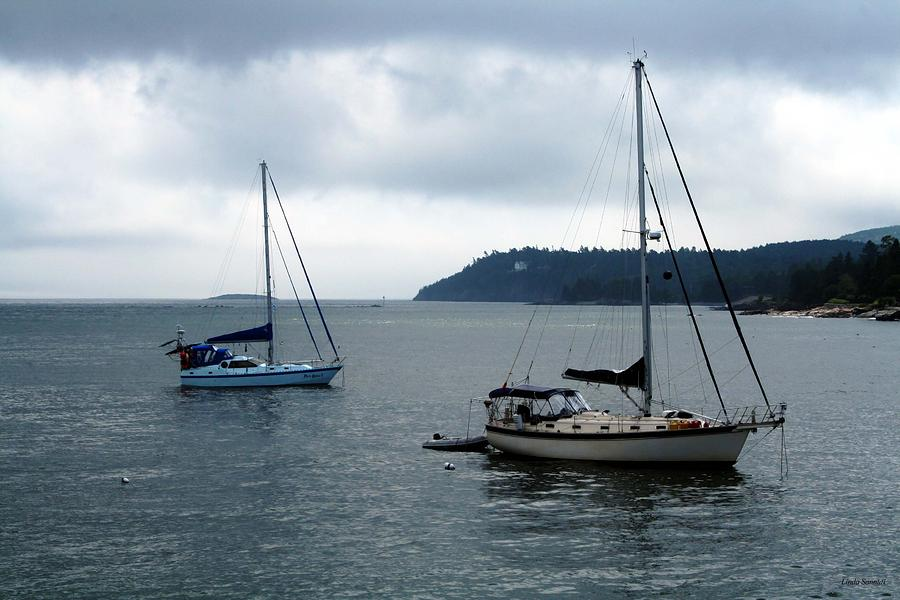 Sailboats Photograph - Sailboats In Bar Harbor by Linda Sannuti