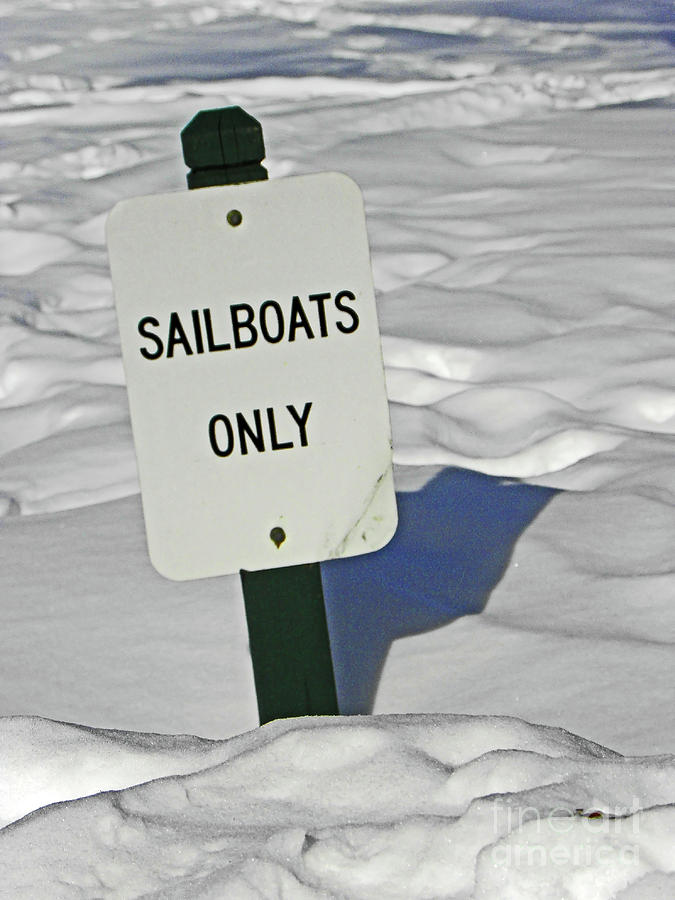 Sailboats Only Photograph