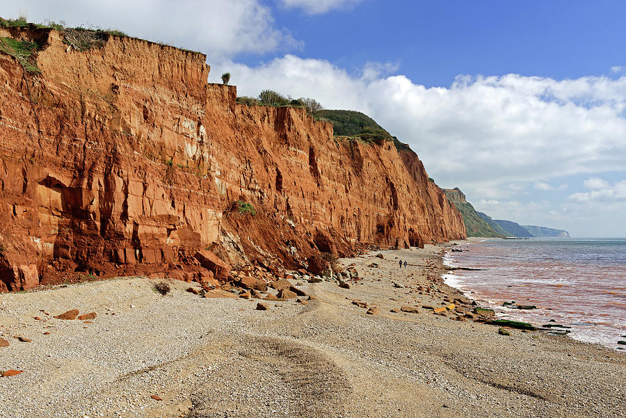 Salcombe Hill Cliff - Sidmouth Photograph