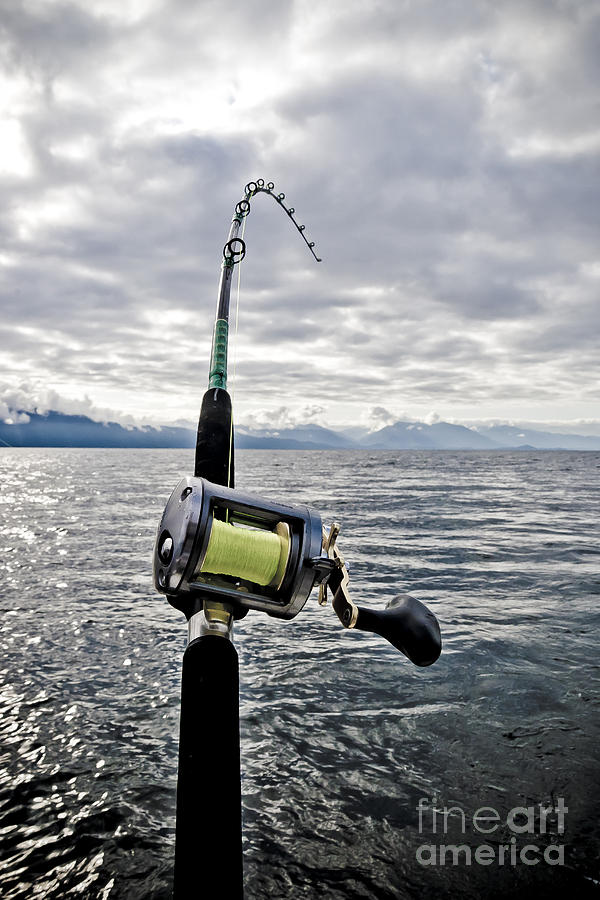 salmon fishing rod photograph by darcy michaelchuk