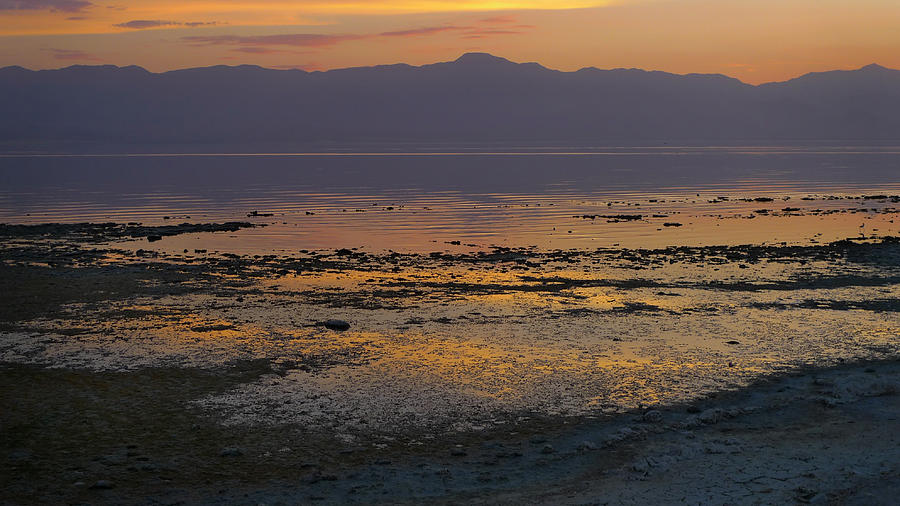Salton Photograph - Salton by Skip Hunt