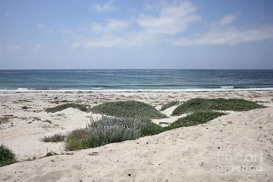 Sand And Sea Photograph