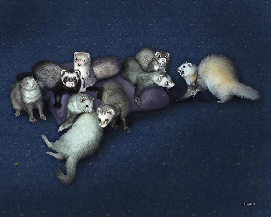 Ferrets Painting - Sandys Ferrets by Barbara Hymer