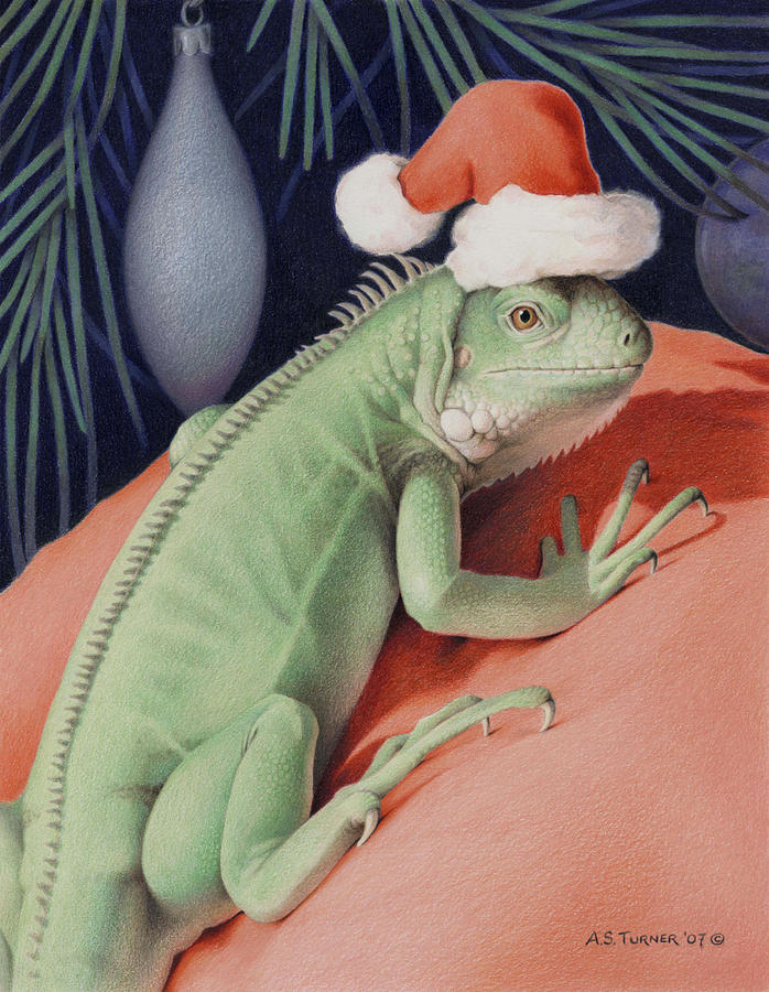 Lizard Drawing - Santa Claws - Bob The Lizard by Amy S Turner