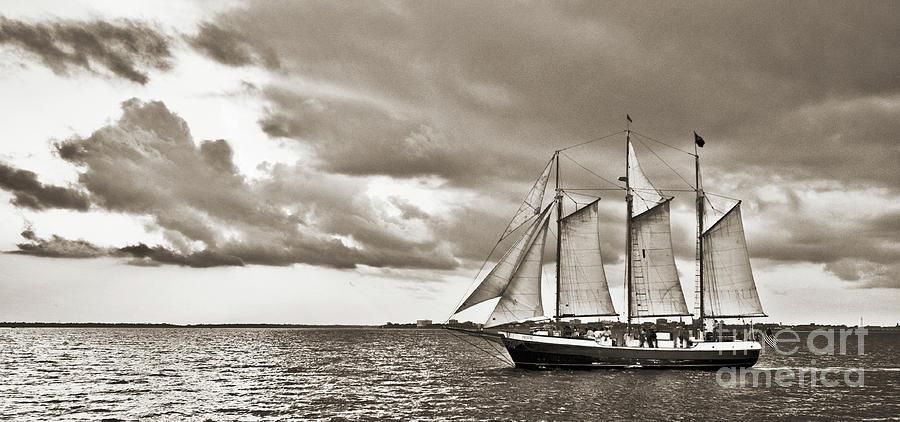 Tall Ship Photograph - Schooner Pride Tallship Charleston Sc by Dustin K Ryan