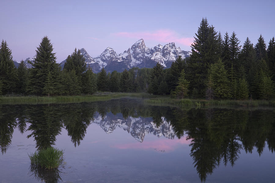 Mountain Photograph - Schwabacher by Andrew Soundarajan