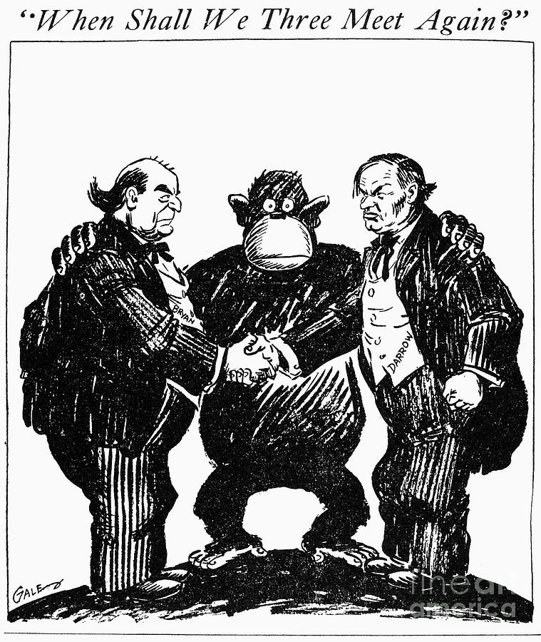 1925 Drawing - Scopes Trial Cartoon 1925 by Granger