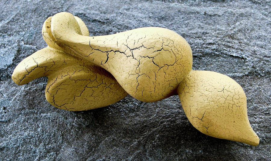 Scroll Shell Sculpture