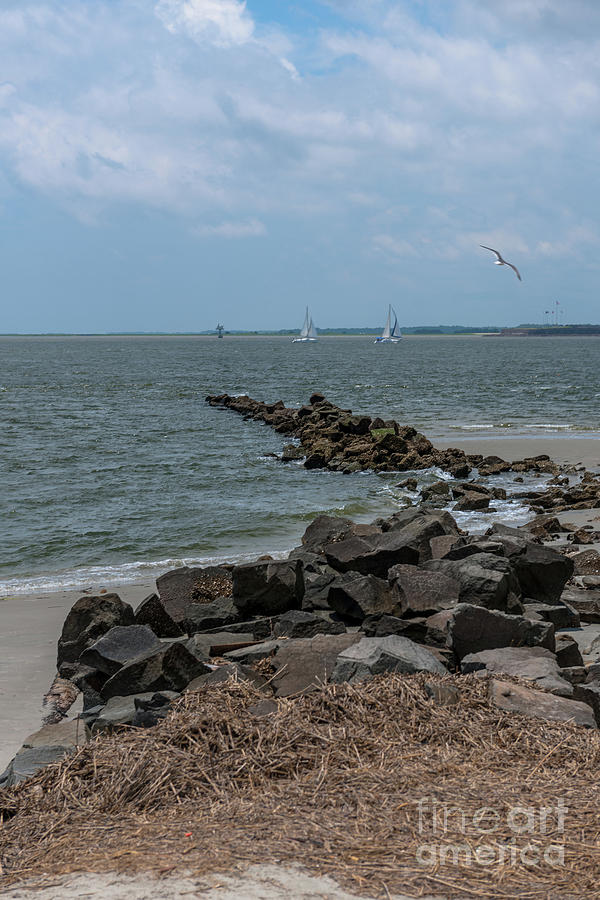 Sea Breeze From Fort Moultrie Photograph