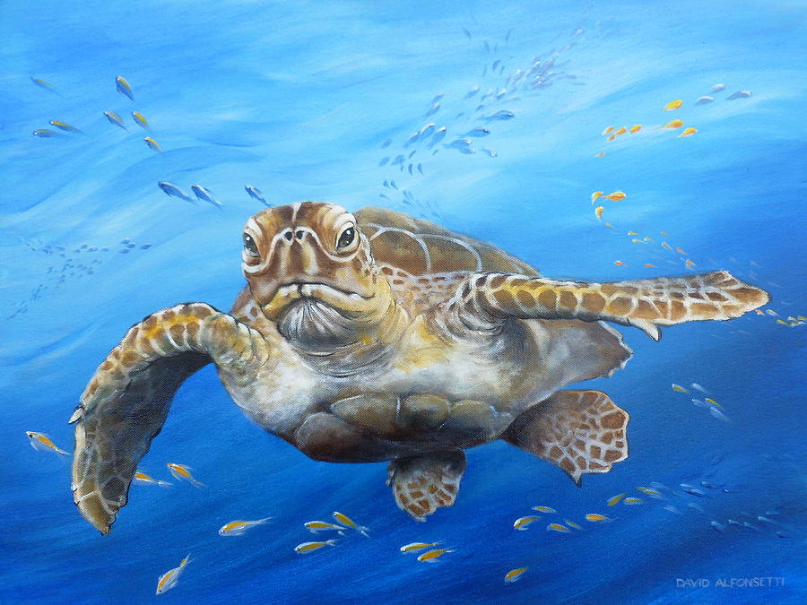 Turtle Painting Acrylic