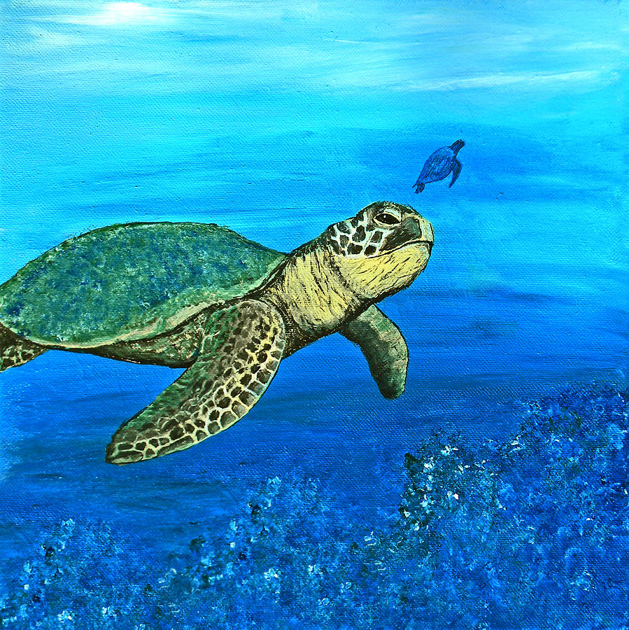 Sea Turtle Painting - Sea Turtle by Sabrina Zbasnik