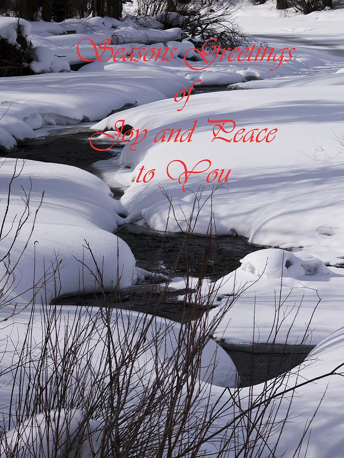 Seasons Of Joy And Peace Photograph