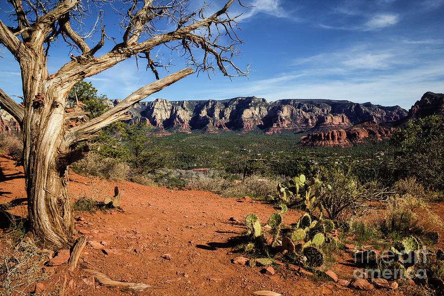 Sedona Overlook Photograph