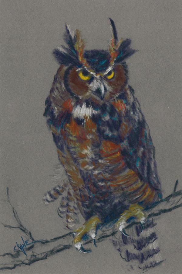 Owl Pastel - Seeking Owl  by Christine Camp