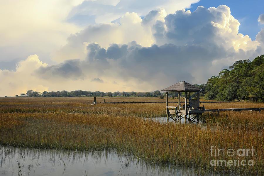Serene Salt Marsh Photograph