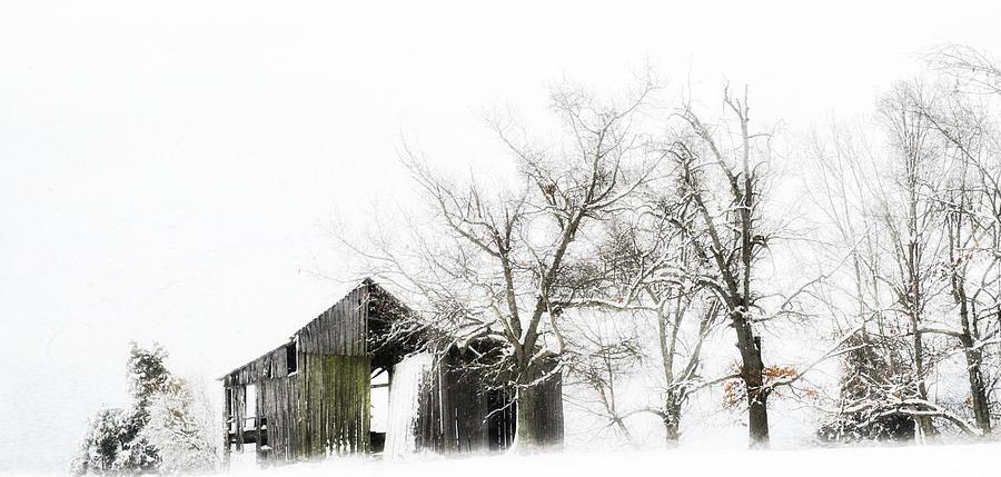 Barn Photograph - Shabby Barn by Kathy Jennings