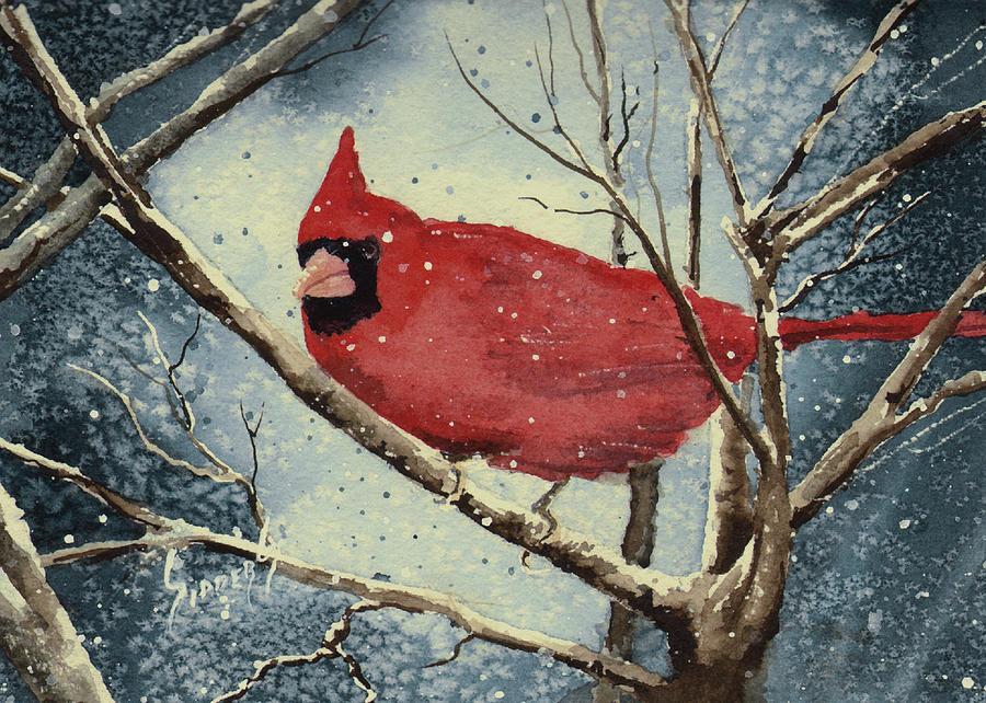 Cardinal Painting - Shellys Cardinal by Sam Sidders