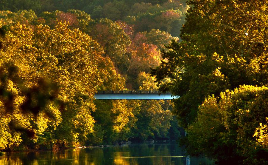 shenandoah-river-float-teresa-henry.jpg