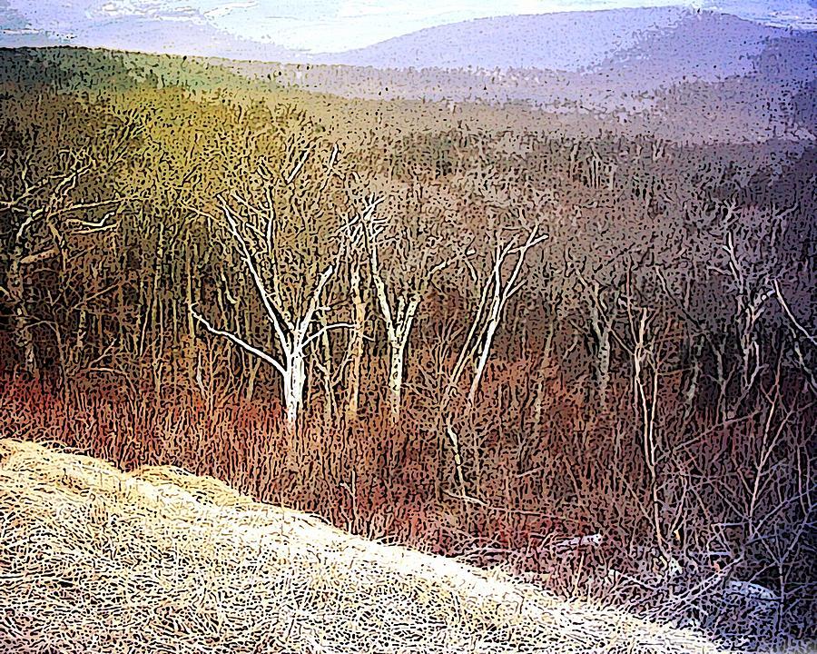 Landscape Shenandoah Valley Wilderness Winter Virginia Usa Blue Ridge Mountains  Mixed Media - Shenandoah Wilderness by Susan  Epps Oliver