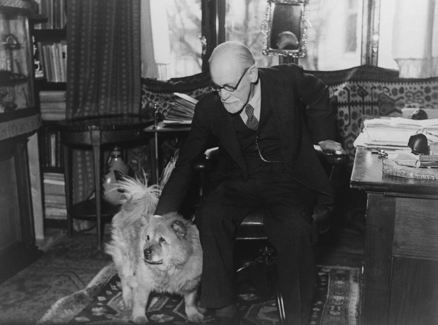 History Photograph - Sigmund Freud 1856-1939, Seated by Everett