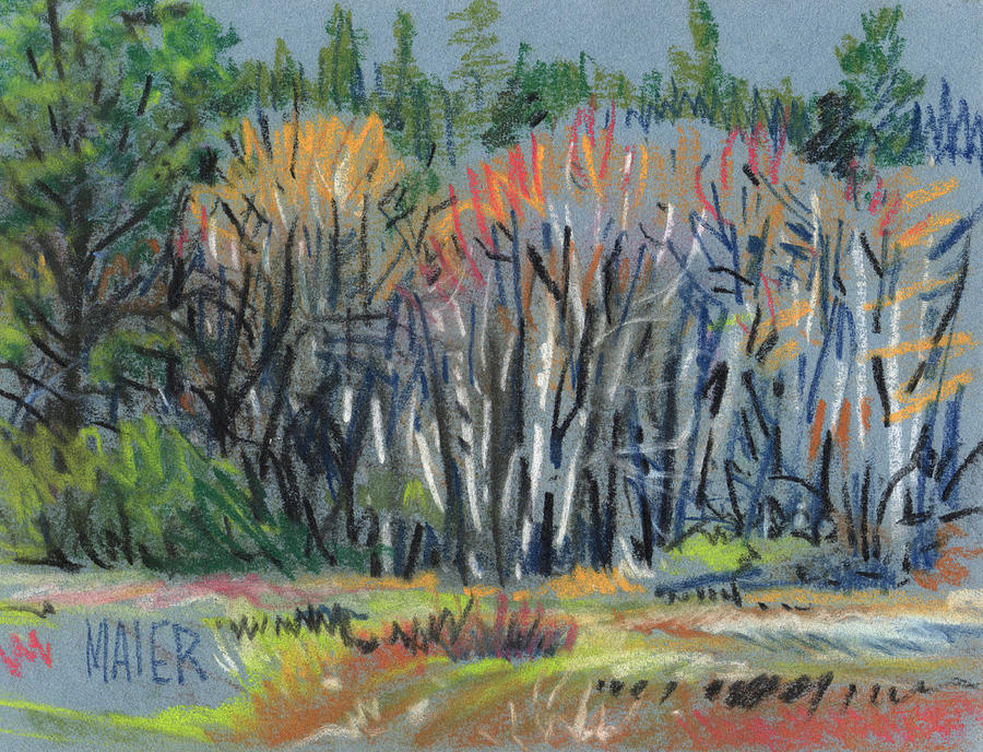 Spring Painting - Signs Of Spring by Donald Maier