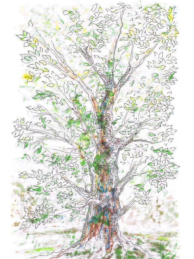 Tree Painting - Silent Witness by Regina Valluzzi
