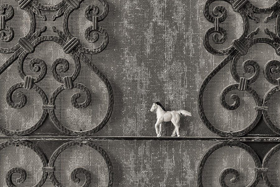 Silver Photograph - Silver Nostalgia by Jeff  Gettis