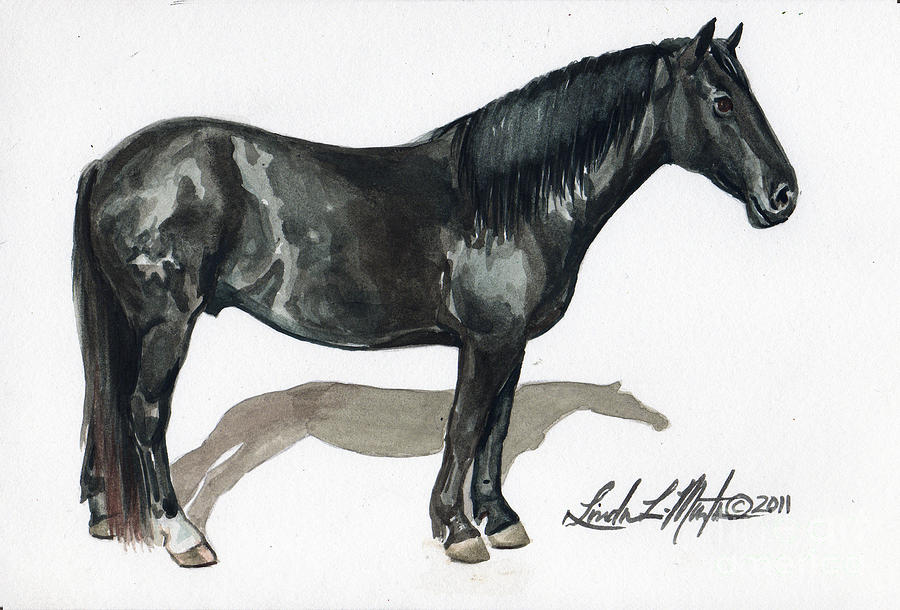 Mustang Painting - Simple Horse Portrait by Linda L Martin