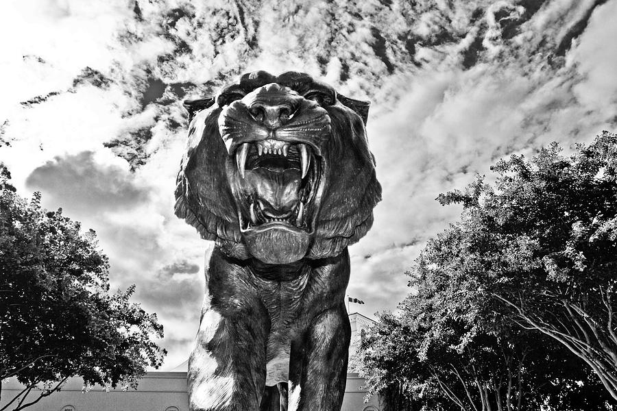 Lsu Photograph - Sir Mike by Scott Pellegrin
