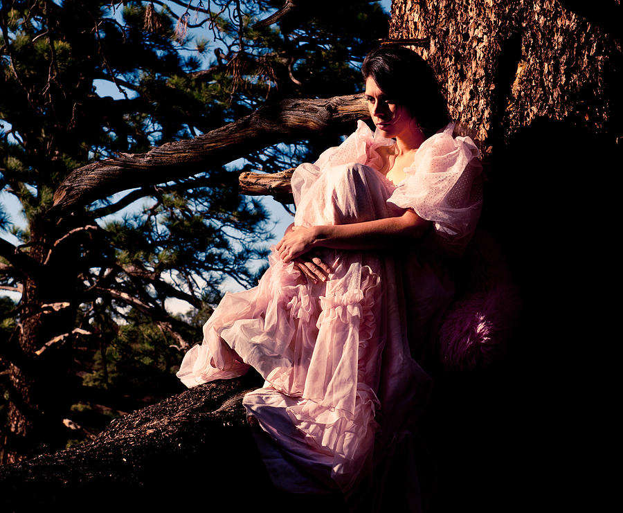 Pink Dress Photograph - Sitting In A Tree by Scott Sawyer