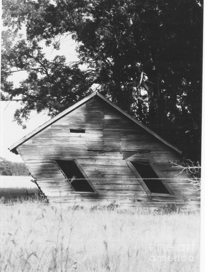 Homestead Photograph - Skewed by The Stone Age