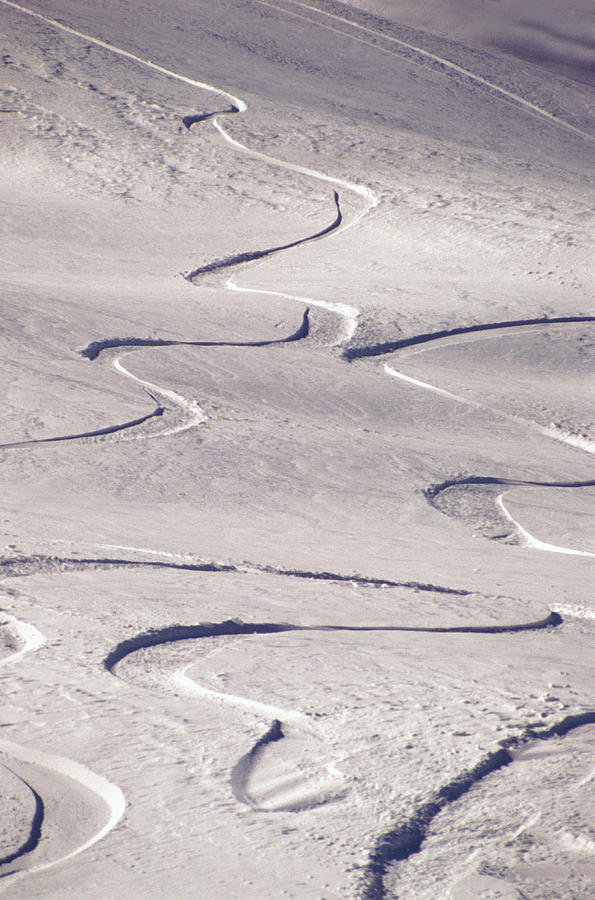 Vertical Photograph - Skiing Tracks by John Foxx