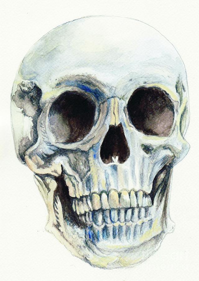 Skull Painting - Skull by Morgan Fitzsimons