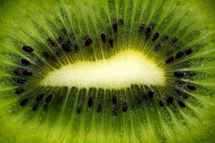 Slice Of Juicy Green Kiwi Fruit Photograph