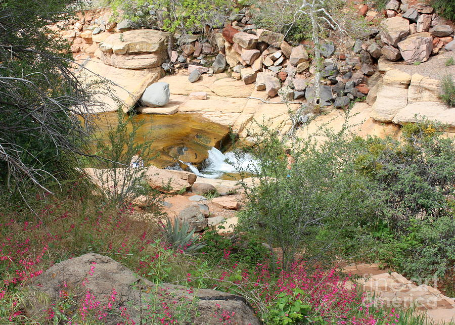 Slide Rock Photograph - Slide Rock With Pink Wildflowers by Carol Groenen