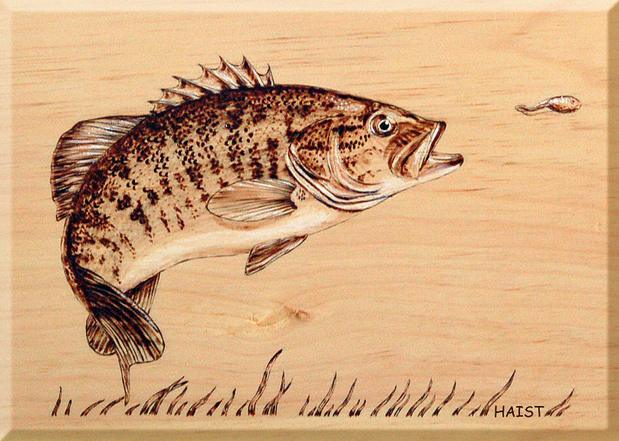 Fish Pyrography - Small Mouth Bass by Ron Haist