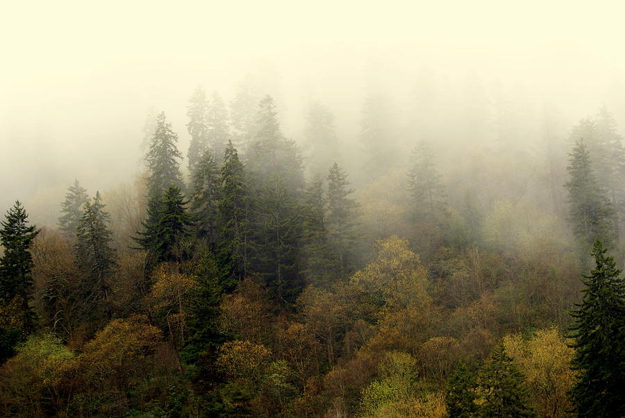 Smoky Mount Horizontal Photograph