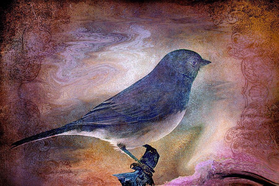 Snowbird Stories... Photograph
