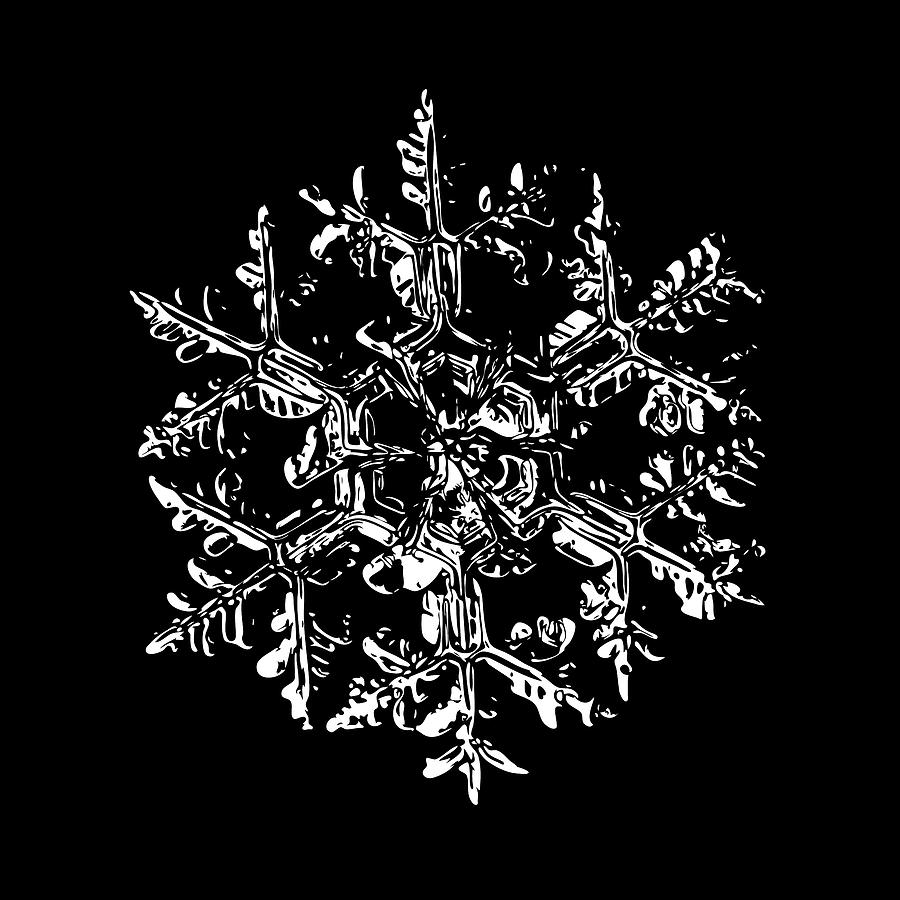 Snowflake Digital Art - Snowflake Vector - Gardeners Dream Black Version by Alexey Kljatov