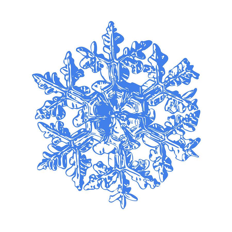 Snowflake Digital Art - Snowflake Vector - Gardeners Dream White Version by Alexey Kljatov